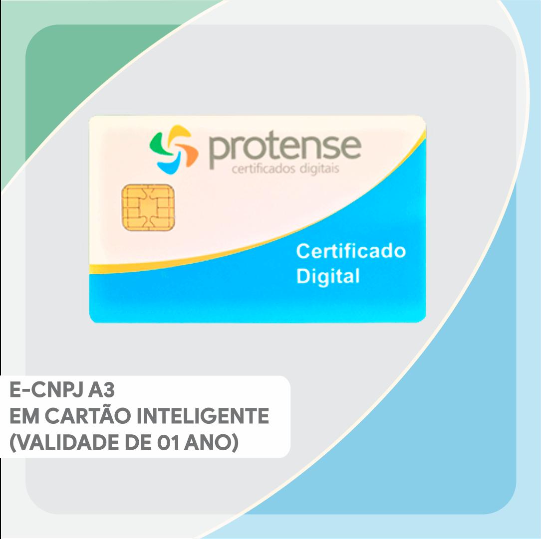 e-CNPJ A3 EM CARTÃO INTELIGENTE (VALIDADE DE 01 ANO)